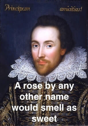 The origin of 'A rose by any other name would smell as sweet'.